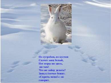По сугробам, по кустам Скачет заяц белый, Нет норы ни здесь, ни там! Что же з...