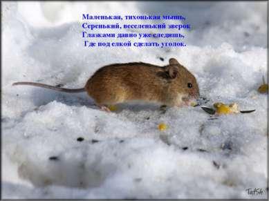 Маленькая, тихонькая мышь, Серенький, веселенький зверок Глазками давно уже с...
