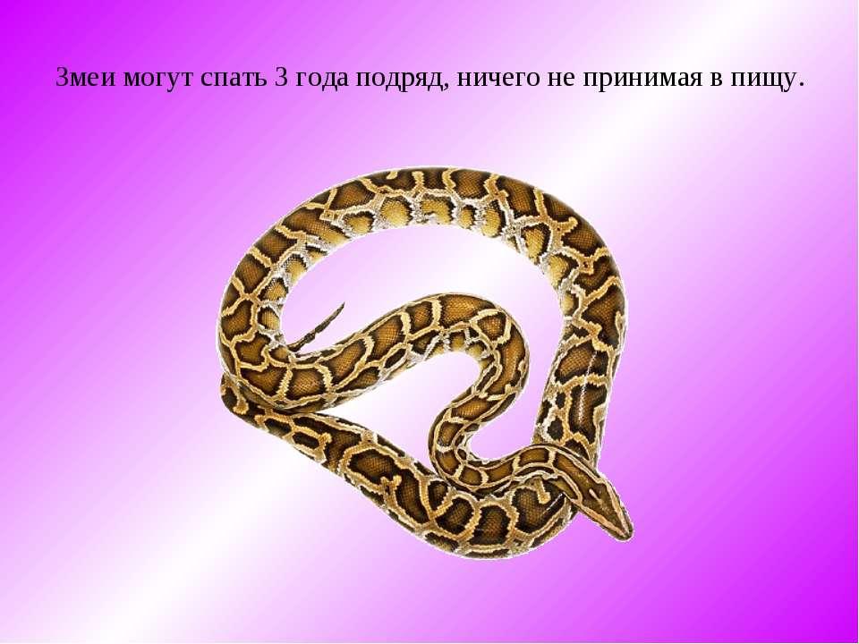 Змеи могут спать 3 года подряд, ничего не принимая в пищу.