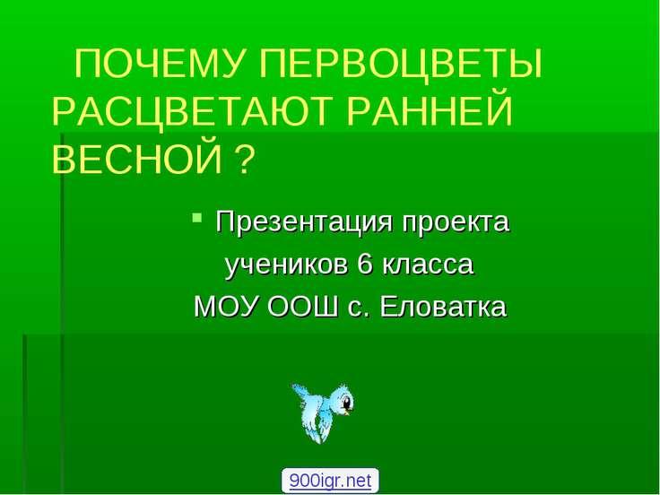 Презентация проекта учеников 6 класса МОУ ООШ с. Еловатка ПОЧЕМУ ПЕРВОЦВЕТЫ Р...