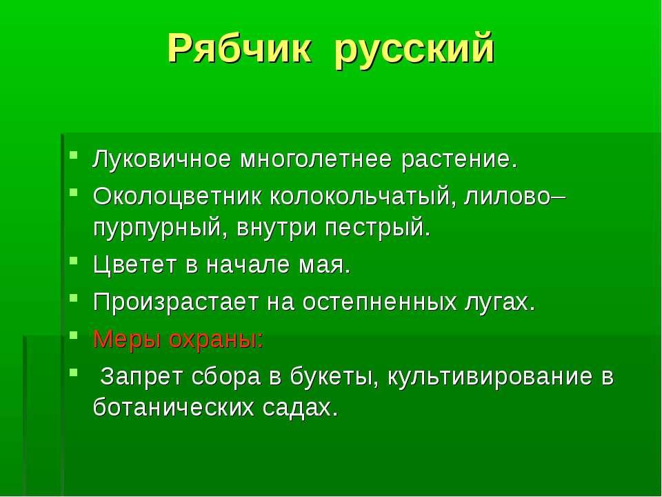 Рябчик русский Луковичное многолетнее растение. Околоцветник колокольчатый, л...
