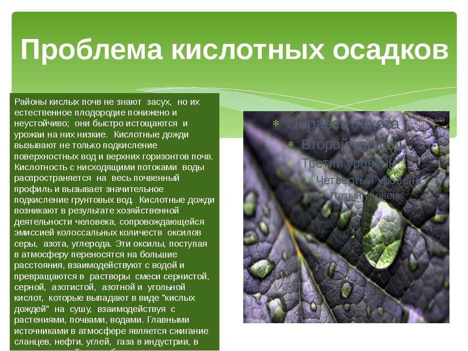 Проблема кислотных осадков Районы кислых почв не знают засух, но их естествен...