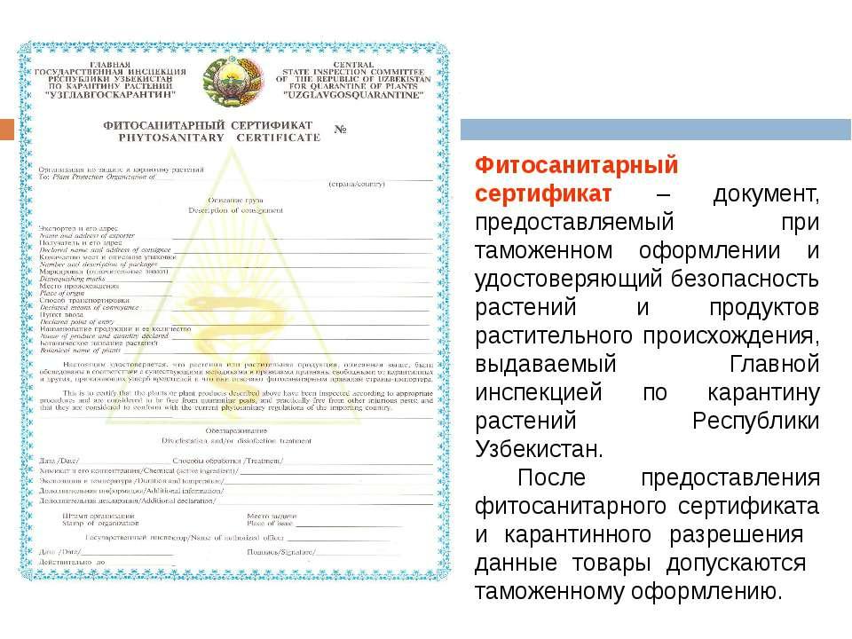 Фитосанитарный сертификат – документ, предоставляемый при таможенном оформлен...