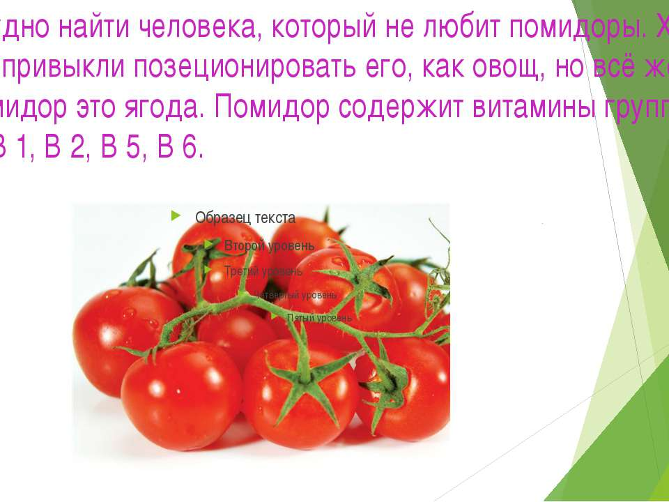 Трудно найти человека, который не любит помидоры. Хотя мы привыкли позеционир...