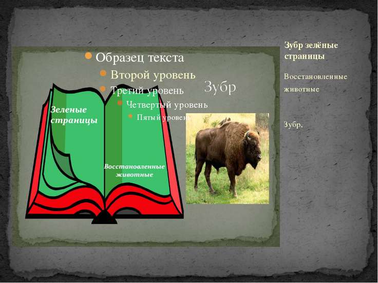 Восстановленные животные Зубр, Зубр зелёные страницы