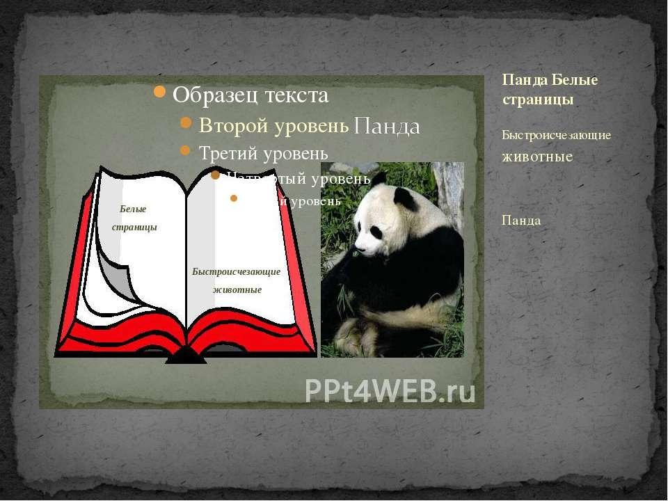 Быстроисчезающие животные Панда Панда Белые страницы