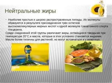 Нейтральные жиры Наиболее простые и широко распространенные липиды. Их молеку...