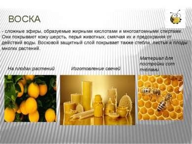 ВОСКА - сложные эфиры, образуемые жирными кислотами и многоатомными спиртами....