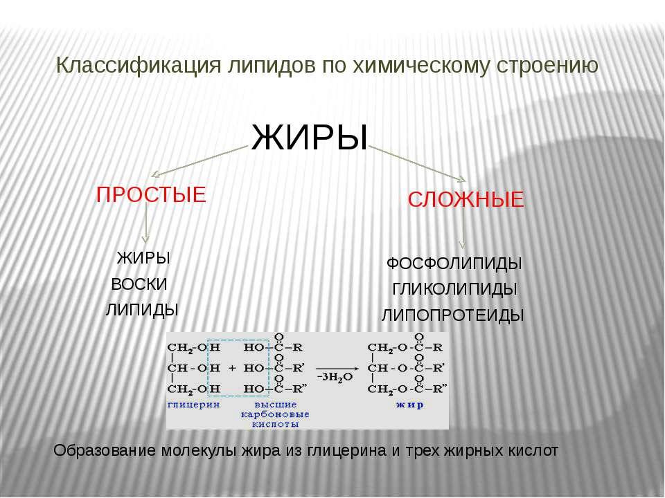 Классификация липидов по химическому строению ПРОСТЫЕ ЖИРЫ СЛОЖНЫЕ ЖИРЫ ВОСКИ...