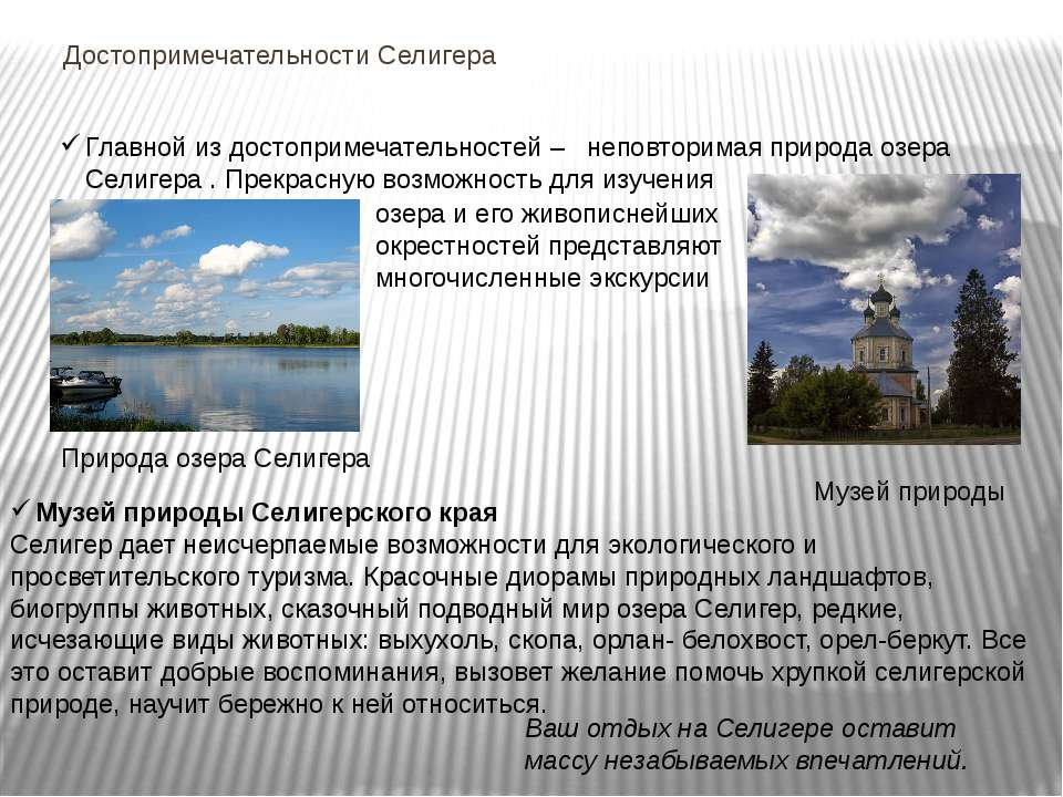 Достопримечательности Селигера Музей природы Селигерского края Селигер дает н...