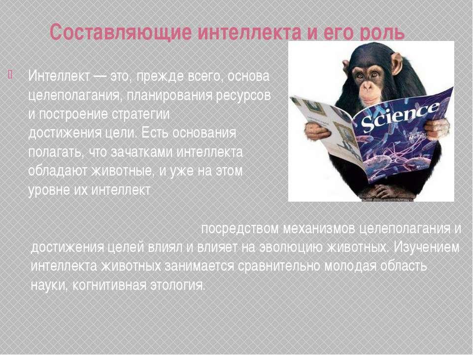 Составляющие интеллекта и его роль Интеллект— это, прежде всего, основа целе...