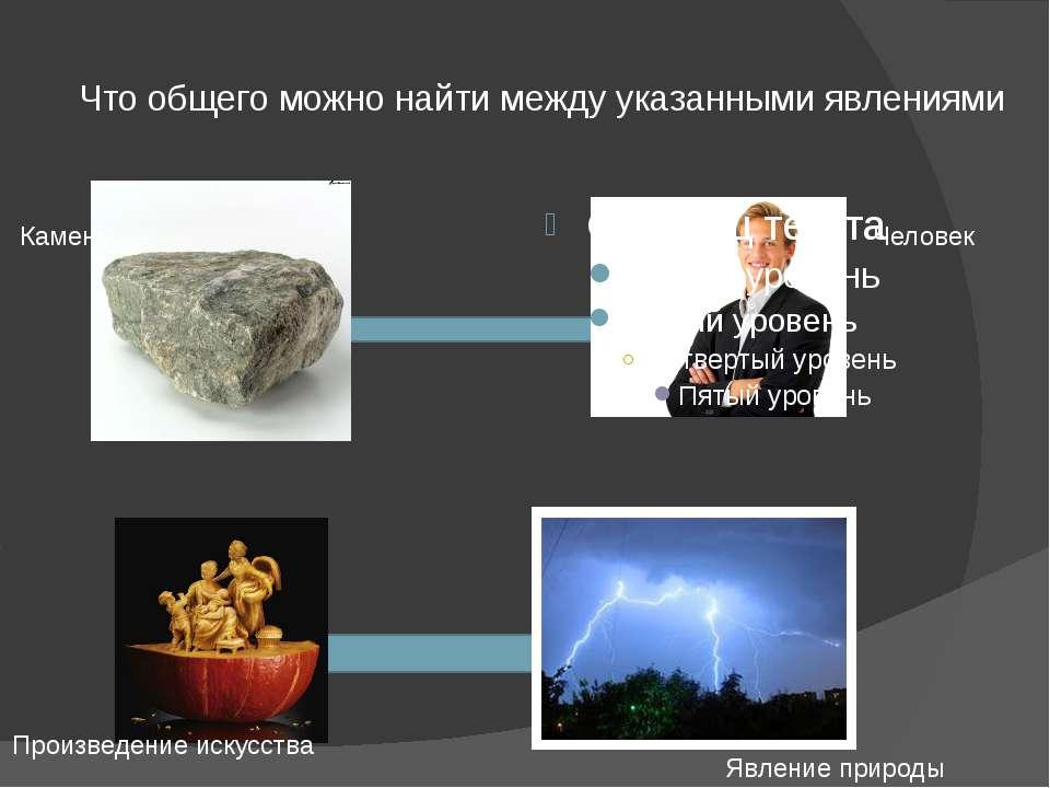 Что общего можно найти между указанными явлениями Человек Камень Произведение...