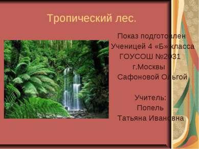 Тропический лес. Показ подготовлен Ученицей 4 «Б» класса ГОУСОШ №2031 г.Москв...