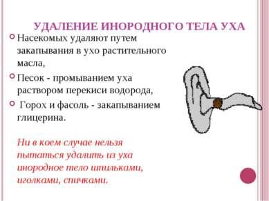 УДАЛЕНИЕ ИНОРОДНОГО ТЕЛА УХА Насекомых удаляют путем закапывания в ухо растит...
