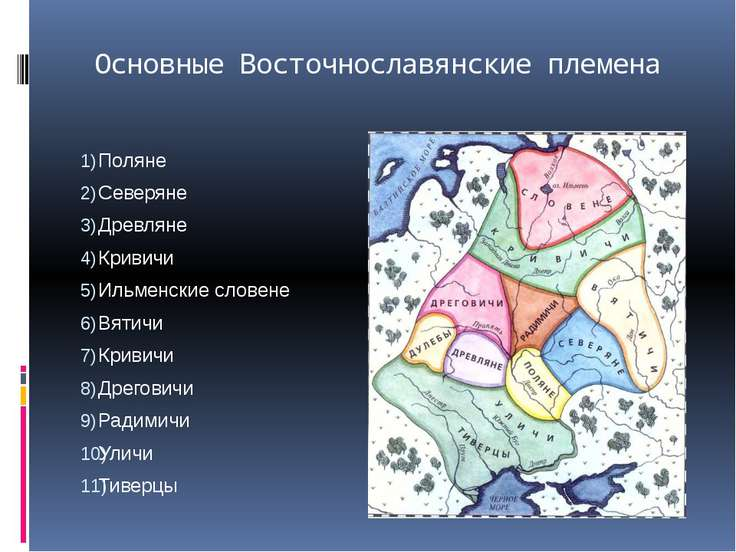 Основные Восточнославянские племена Поляне Северяне Древляне Кривичи Ильменск...