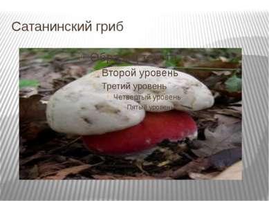 Сатанинский гриб
