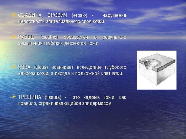 ССАДИНА, ЭРОЗИЯ (erosio) - нарушение целостности эпителиального слоя кожи. РУ...