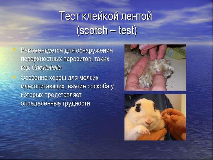 Тест клейкой лентой (scotch – test) Рекомендуется для обнаружения поверхностн...