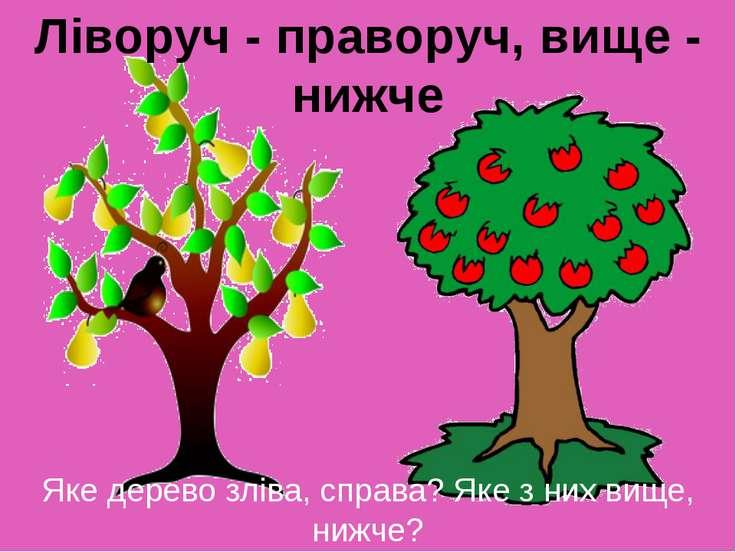 Яке дерево зліва, справа? Яке з них вище, нижче? Якого кольору груші, яблука?...