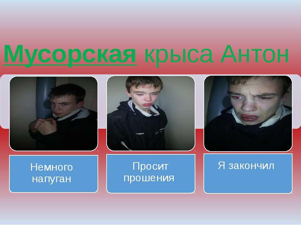 Мусорская крыса Антон