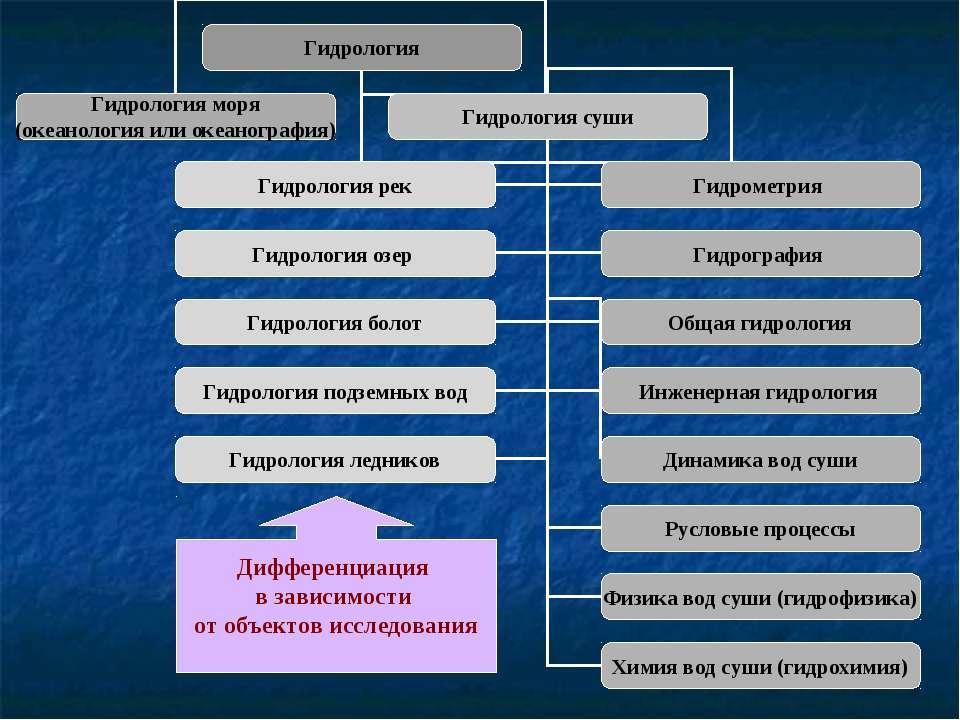 Дифференциация в зависимости от объектов исследования