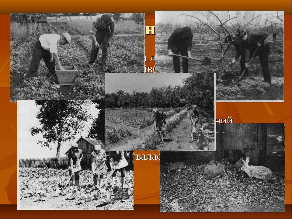 Досягнення У1967 році школа стала лауреатом Всеукраїнської виставки плодів та...