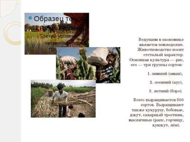 Ведущим в экономике является земледелие. Животноводство носит отсталый характ...
