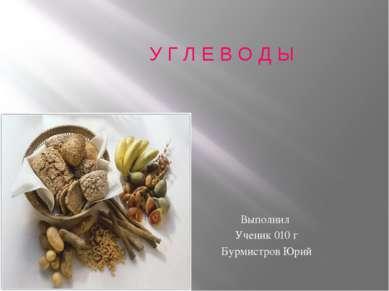 У Г Л Е В О Д Ы Выполнил Ученик 010 г Бурмистров Юрий