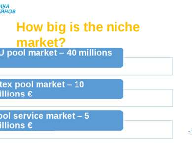 How big is the niche market?