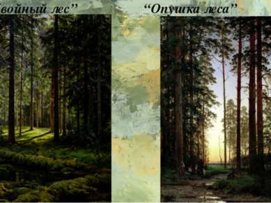 """""""Хвойный лес"""" """"Опушка леса"""""""