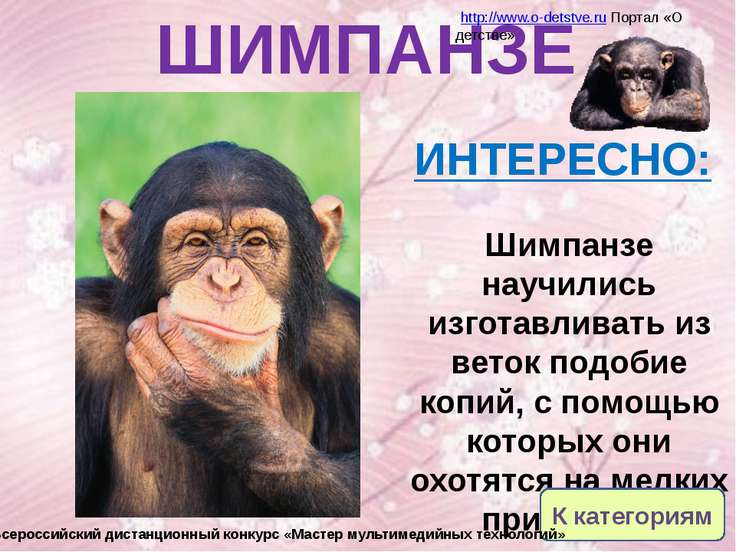 Ресурсы: Брэм А.Э. Жизнь животных: В 3 т.: Обраб. для юношества по последнему...