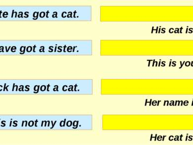 His cat is white. This is your dog. Her name is Ann. Her cat is black. Kate h...