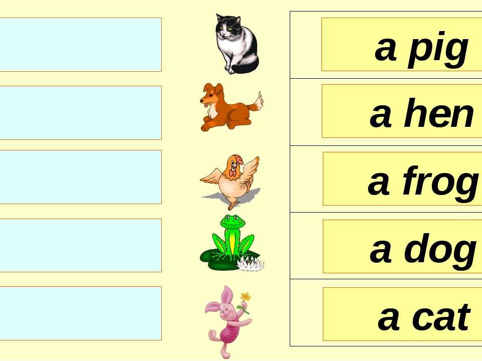 a frog a hen a pig a dog a cat