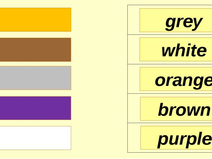 grey white orange purple brown