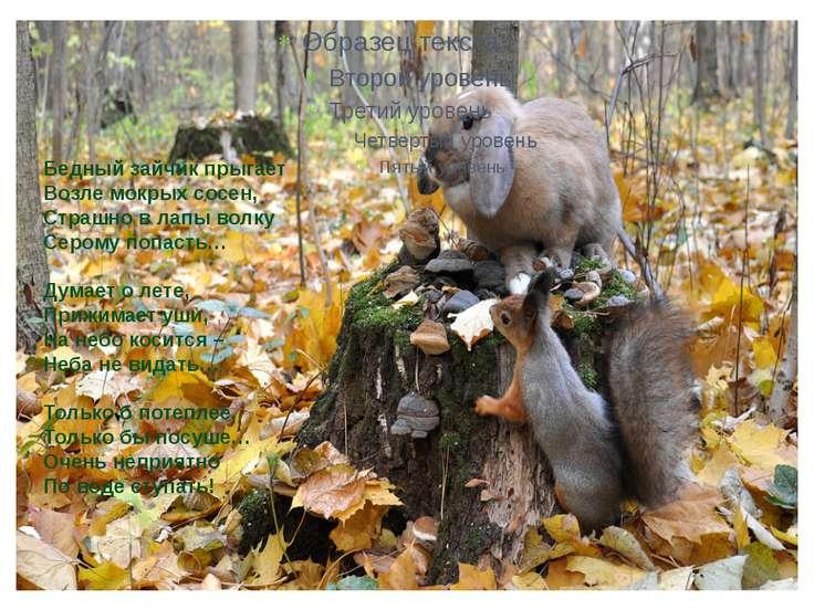 Бедный зайчик прыгает Возле мокрых сосен, Страшно в лапы волку Серому попасть...