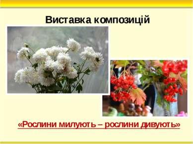 Виставка композицій «Рослини милують – рослини дивують»
