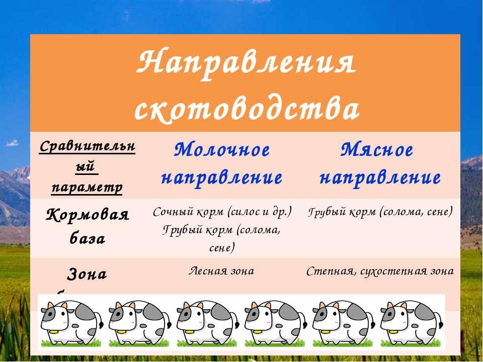Направления скотоводства Сравнительный параметр Молочное направление Мясное н...