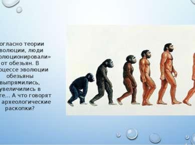Согласно теории эволюции, люди «эволюционировали» от обезьян. В процессе эвол...