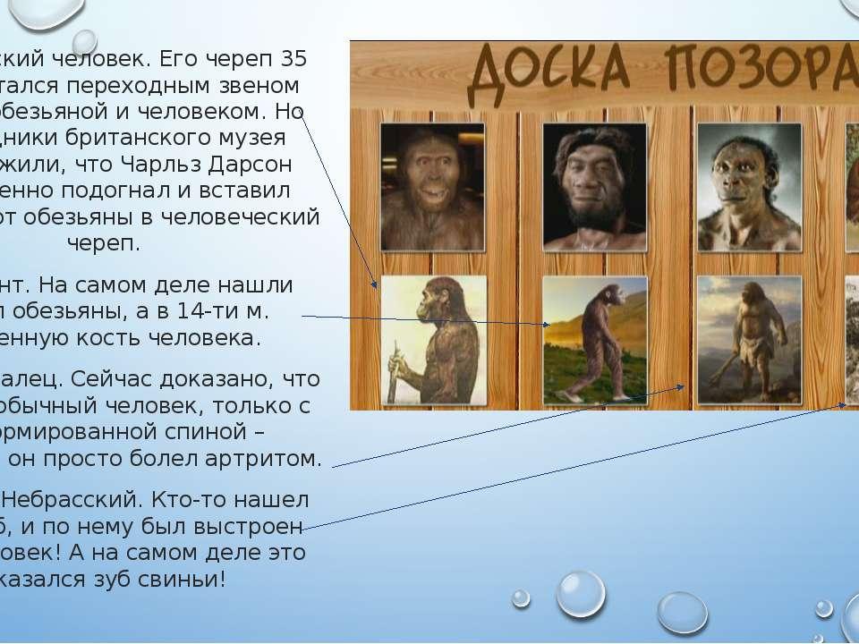Пилдамский человек. Его череп 35 лет считался переходным звеном между обезьян...