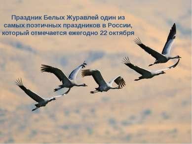 Праздник Белых Журавлей один из самых поэтичных праздников в России, который ...