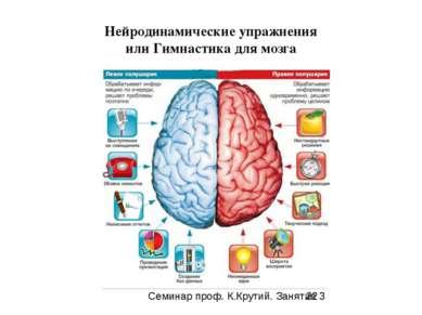 Нейродинамические упражнения или Гимнастика для мозга Семинар проф. К.Крутий....