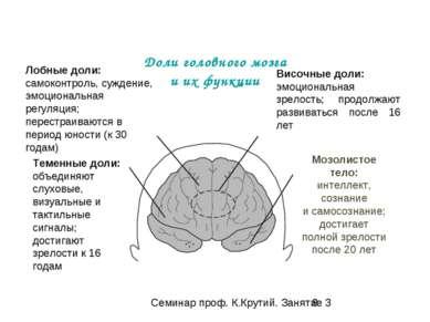 Доли головного мозга и их функции Височные доли: эмоциональная зрелость; прод...