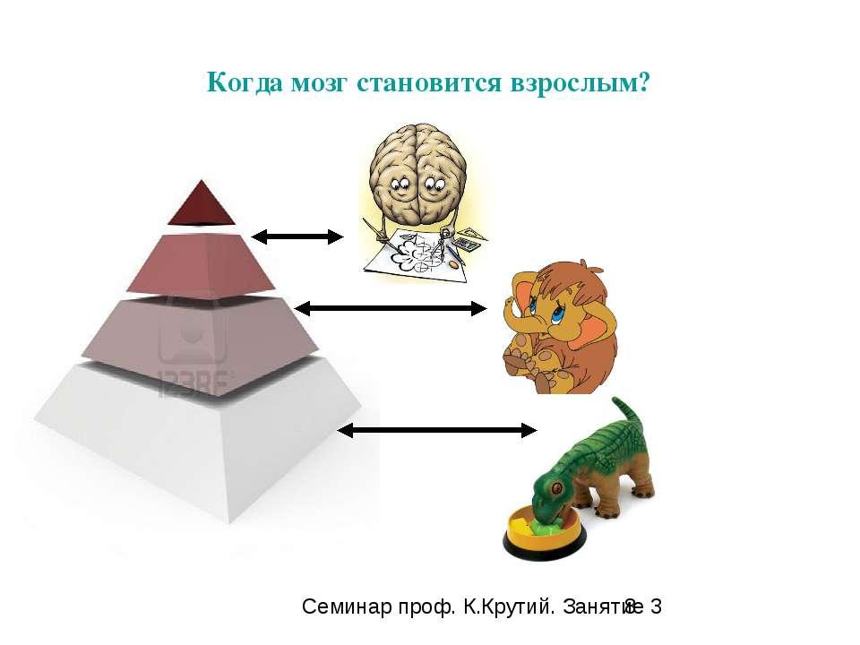 Когда мозг становится взрослым? Семинар проф. К.Крутий. Занятие 3