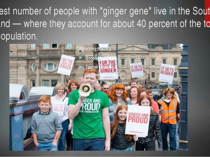 "The largest number of people with ""ginger gene"" live in the South-East of Sco..."