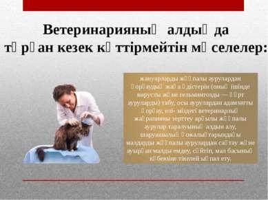 Ветеринарияның алдыңда тұрған кезек күттірмейтін мәселелер: жануарларды жұқпа...