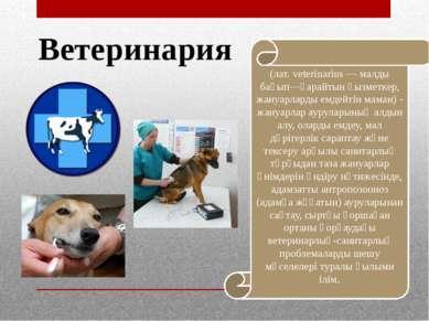 Ветеринария (лат. veterinarius — малды бағып—қарайтын қызметкер, жануарларды ...