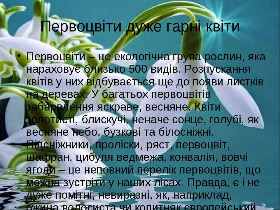Первоцвіти дуже гарні квіти Первоцвіти – це екологічна група рослин, яка нара...