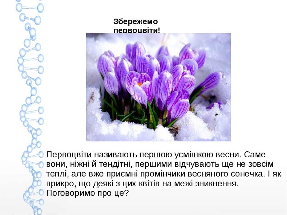 Збережемо первоцвіти! Первоцвіти називають першою усмішкою весни. Саме вони, ...
