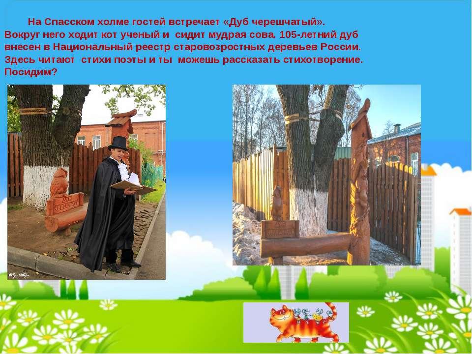 На Спасском холме гостей встречает «Дуб черешчатый». Вокруг него ходит кот уч...