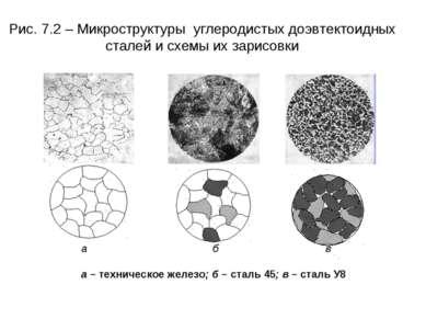 Рис. 7.2 – Микроструктуры углеродистых доэвтектоидных сталей и схемы их зарис...